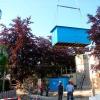Descarga Chiringuito de madera Ibiza Holanda